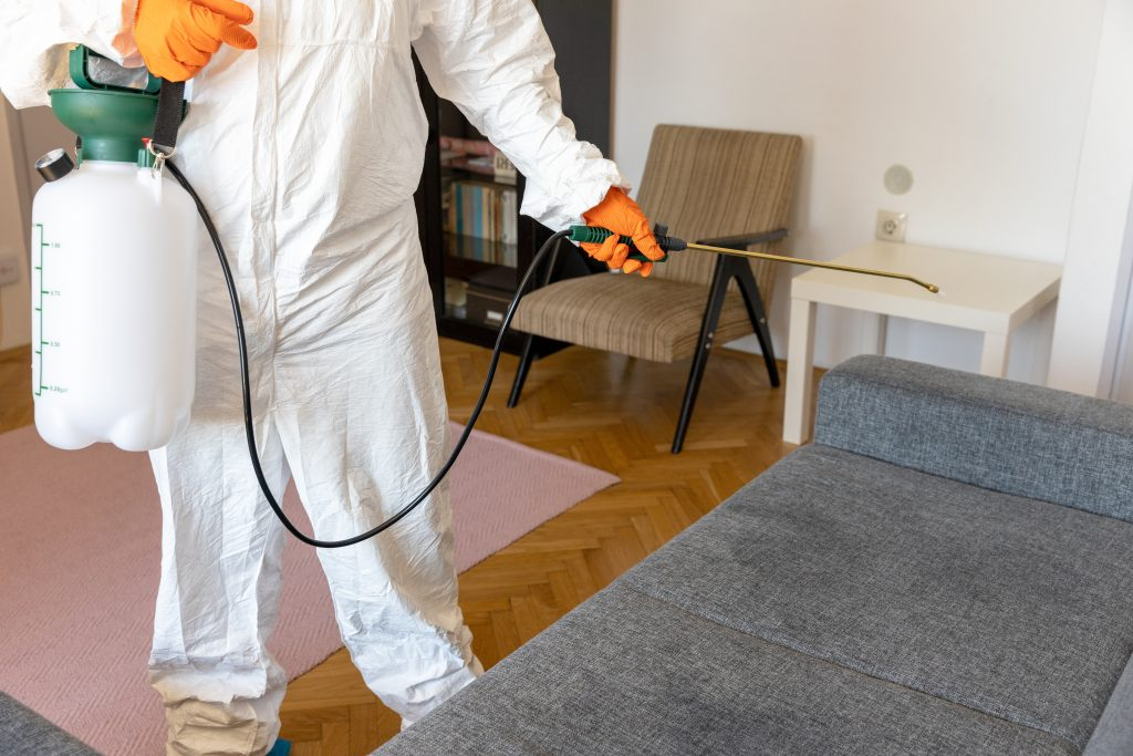 Greenpro Rug Care best carpet & rug cleaning service in the tri-state area